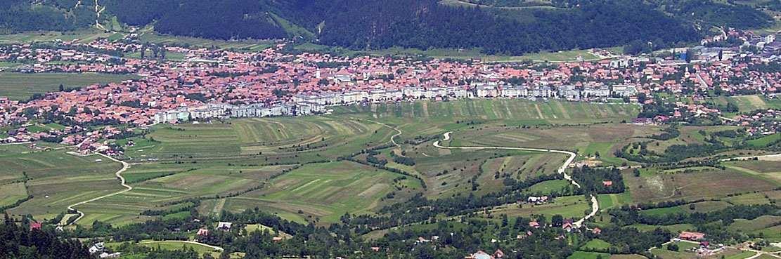 zarnesti city