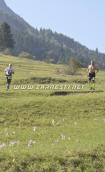 Trail Running at Piatra Craiului Marathon 2015 image 1