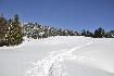 Carare inzapezita iarna in Zanoaga Piatra Craiului