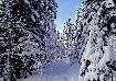 Carare in Zanoaga iarna in Piatra Craiului