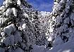 Spre creasta Pietrei Craiului iarna pe carari inzapezite