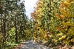 Drumul pitores spre Partia Motocros sau Drumul Forestier