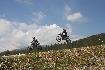 Sarituri cu Motocicleta pe Circuitul de Motocross Zarnesti Brebina/Breghina