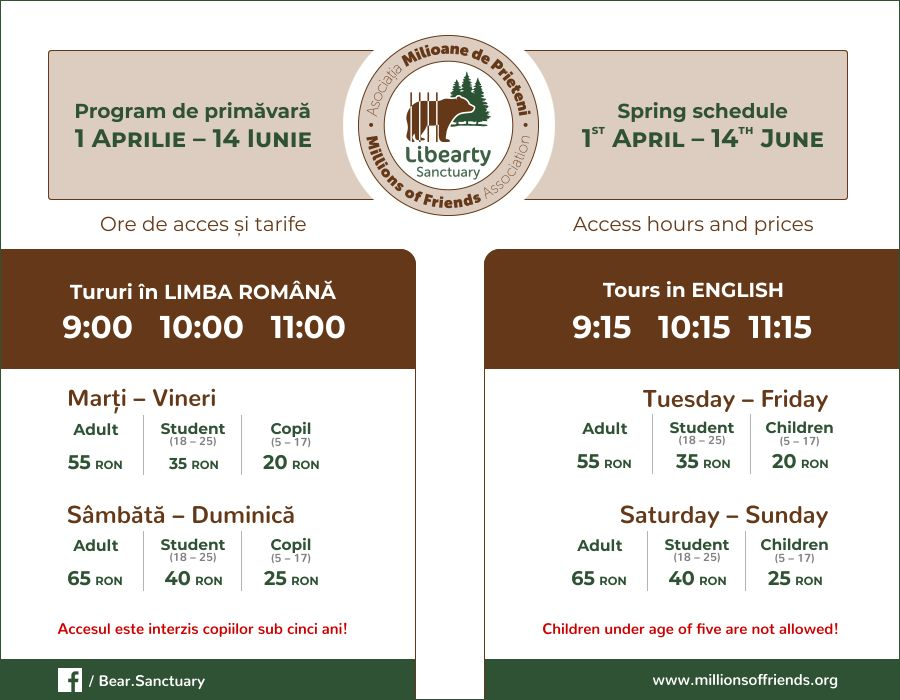 tarife-program-intrare-vara-rezervatia-de-ursi-zarnesti-schedule-prices-bear-sanctuary-sping