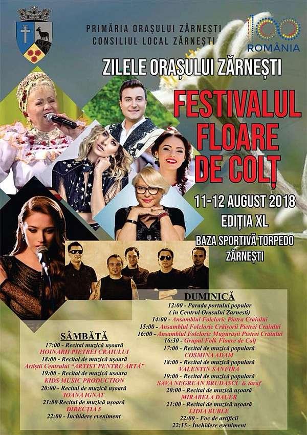 Festivalul Floare de Colt 2018 Zilele Orasului Zarnesti
